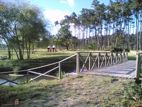 Parque do Lago em Maiorca: Jardim
