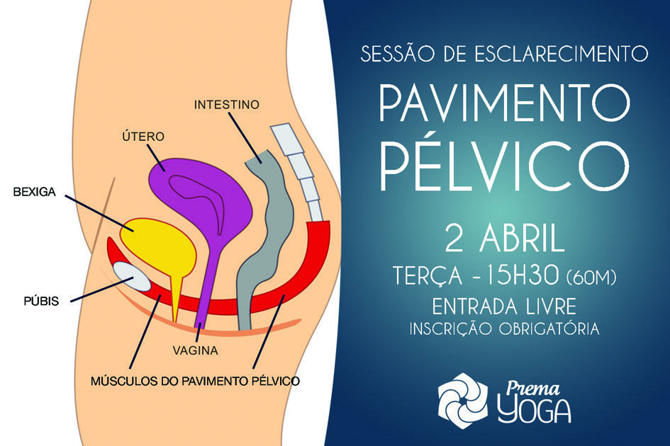 SESSÃO PAVIMENTO PELVICO.jpg