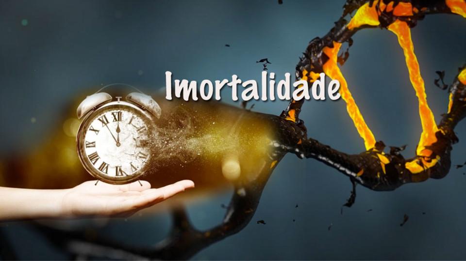 Imortalidade II.jpg