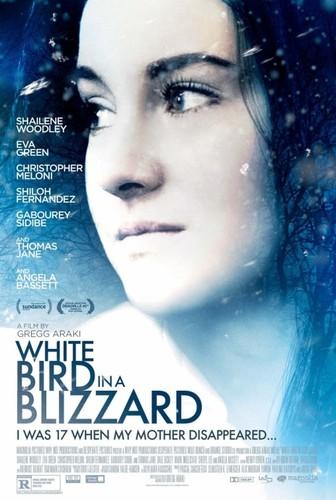 white_bird_in_a_blizzard.jpg