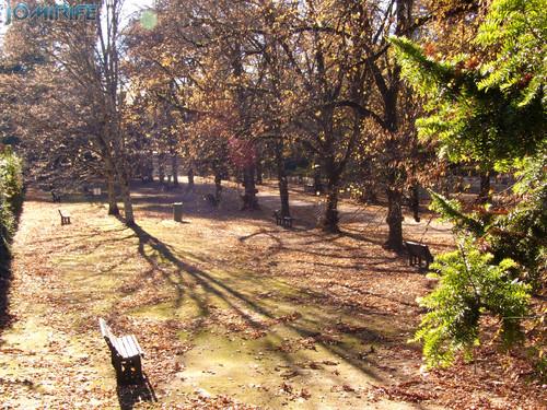 Jardim Botânico da Universidade de Coimbra (5) Jardim [en] Botanical Garden of the University of Coimbra - Garden