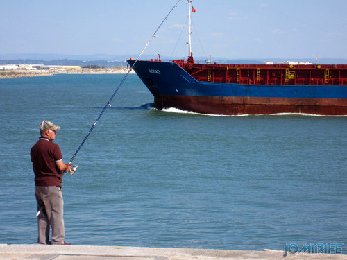 Pescando navios na Figueira da Foz (1) [EN] Fishing ships in Figueira da Foz