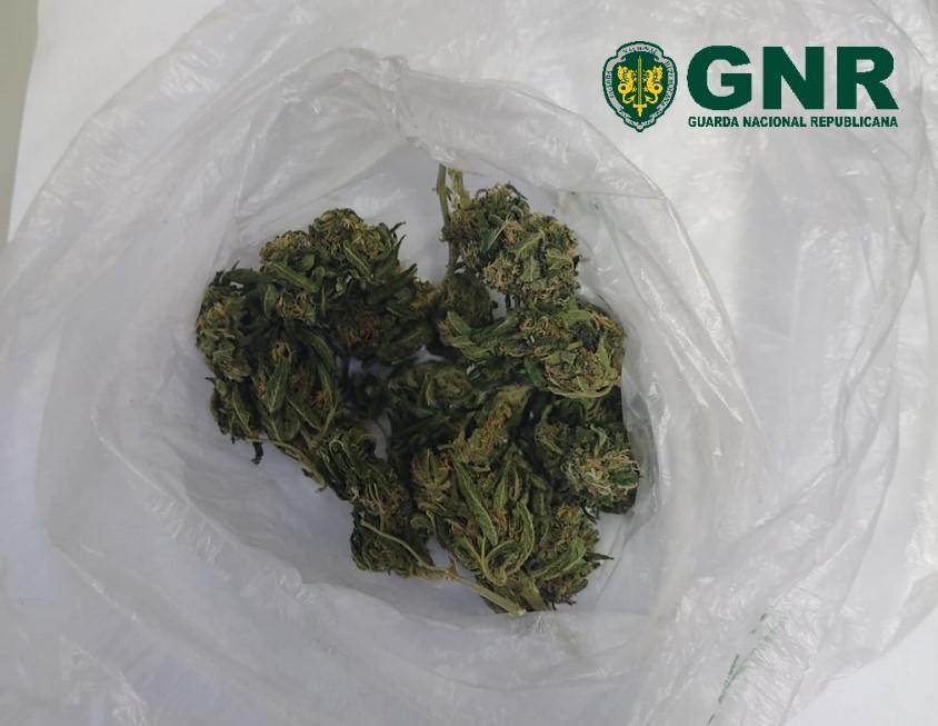 GNR Santarém - Liamba.jpg