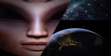 Alien Hybrids.jpg