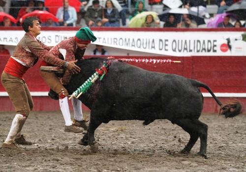Jorge Santos, com plena ajuda...