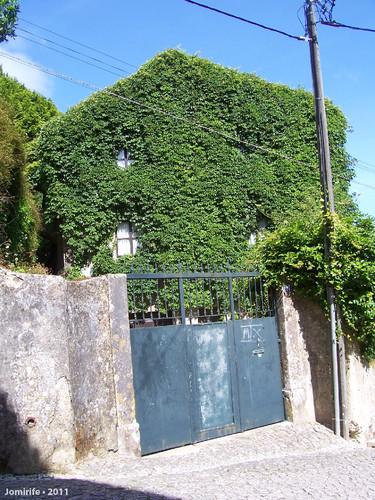 Casa camuflada em Sintra