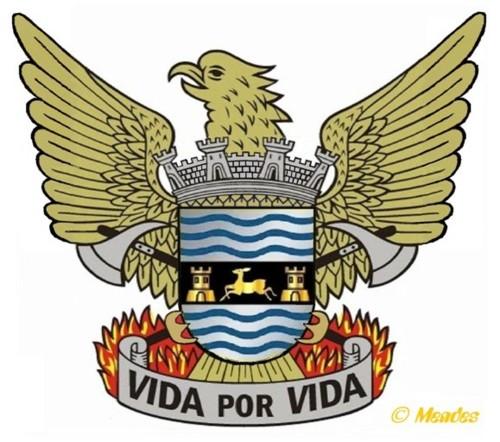Vila de Cerva - Bombeiros Voluntários - Brasão.j