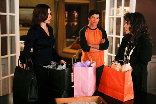 The_Good_Wife_-_The_4th_Season 3.jpg