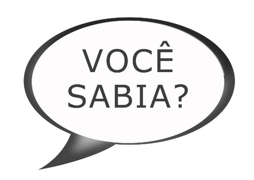 o-curioso-mundo-do-seopapese-no-brasil.jpg