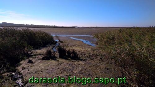 Passadico_Esmoriz_19.jpg