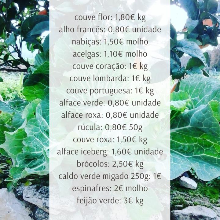 Vegetais14e15Nov.png