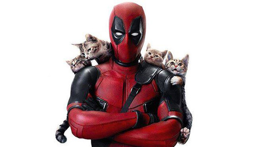 deadpool-caturday-header-168596.jpg