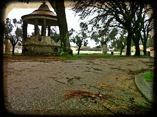 mau tempo, 19-01-2013, São Martinho da Gandara
