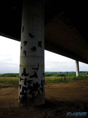 Pilares da auto estrada A17 com pássaros pintados (2) [en] Pillars of the motorway A17 with painted birds