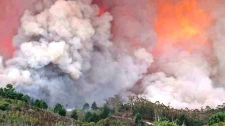 knysna-fire-south-africa.jpg