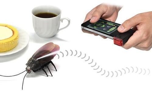 gokiraji-cockroach-bug-rc-toy-iphone-ipad-1.jpeg
