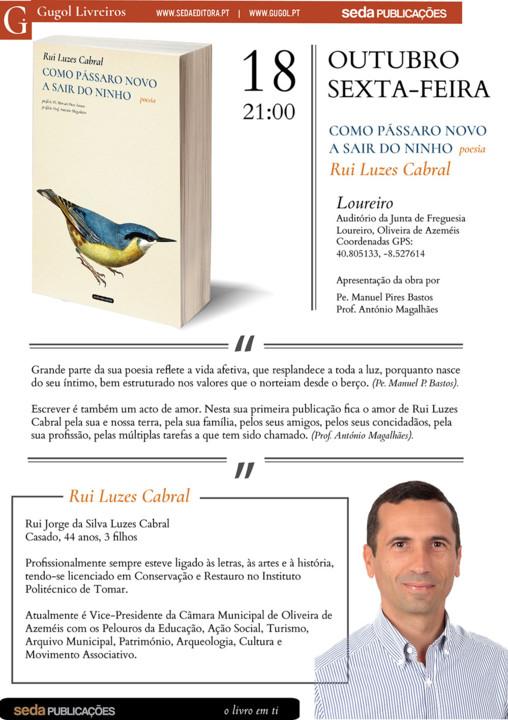 Newsletter Livro Rui Luzes Cabral.jpg