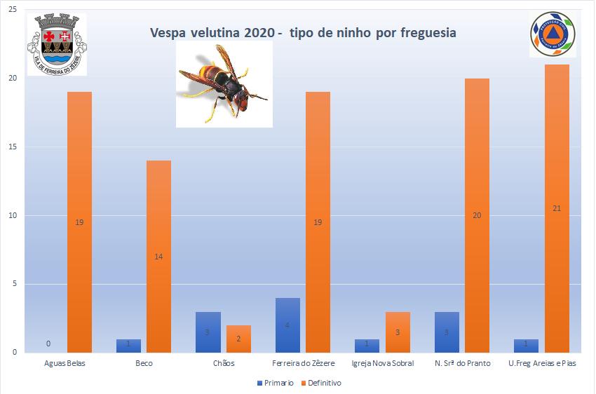 GRAFICO VELUTINA FZZ 2020 A.png