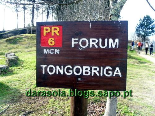 Tongobriga_03.JPG