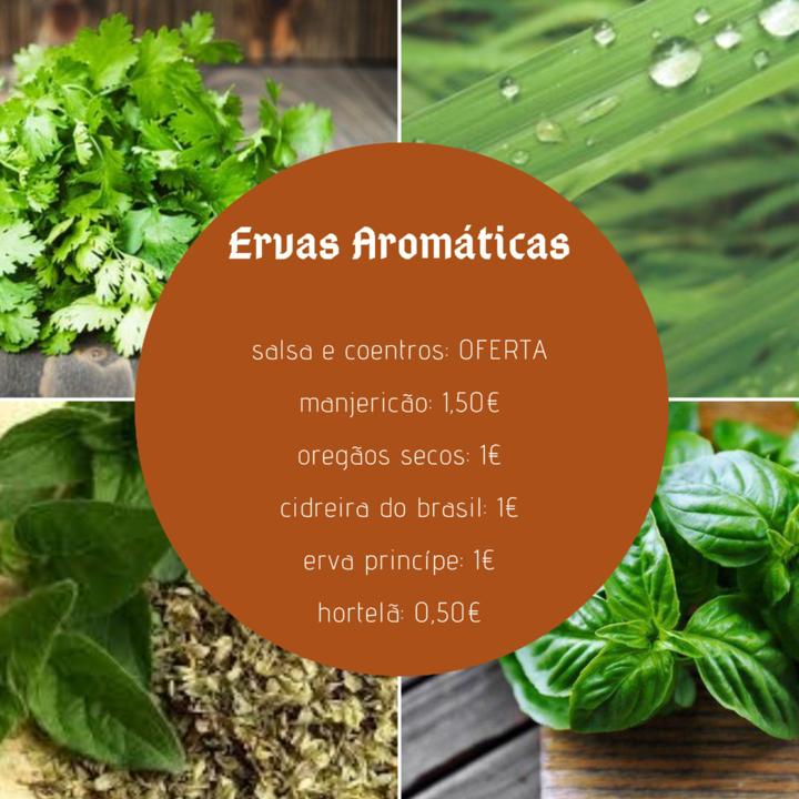 ErvasAromaticas15Agos.png