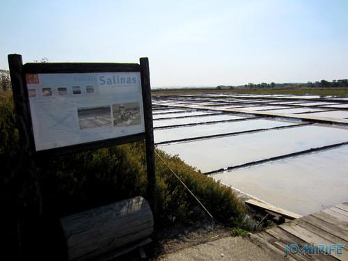 Salinas da Figueira da Foz (1) Início da rota das salinas [en] Salt fields of Figueira da Foz in Portugal