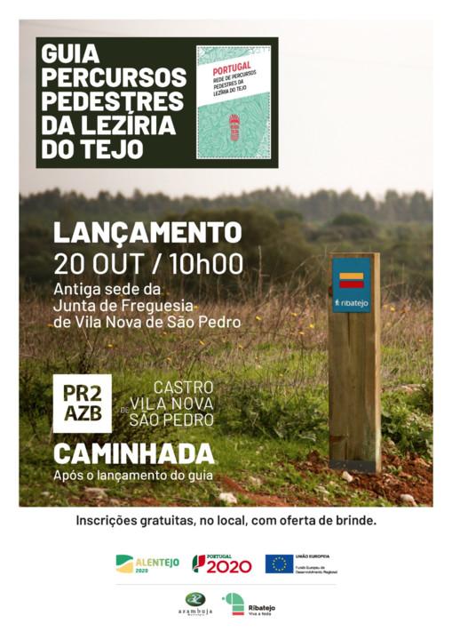PR2-AZB castro vnspedro - cartaz.jpg