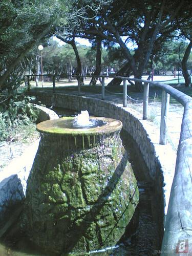 Gala - Vulcão de água (Figueira da Foz)