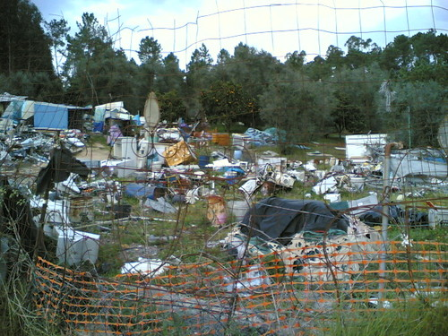 Lixo espalhado por zona verde florestal
