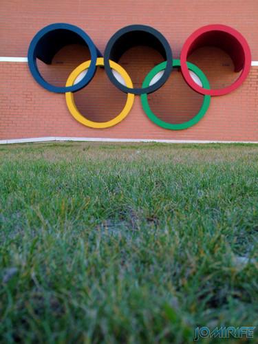 Anéis olímpicos - Pavilhão Municipal de Montemor-o-Velho (4) [en] Olympic Rings - Municipal gym of Montemor-o-Velho