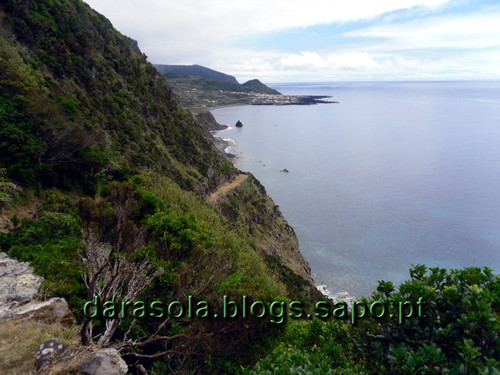 Azores_flores_faja_grande_13.JPG