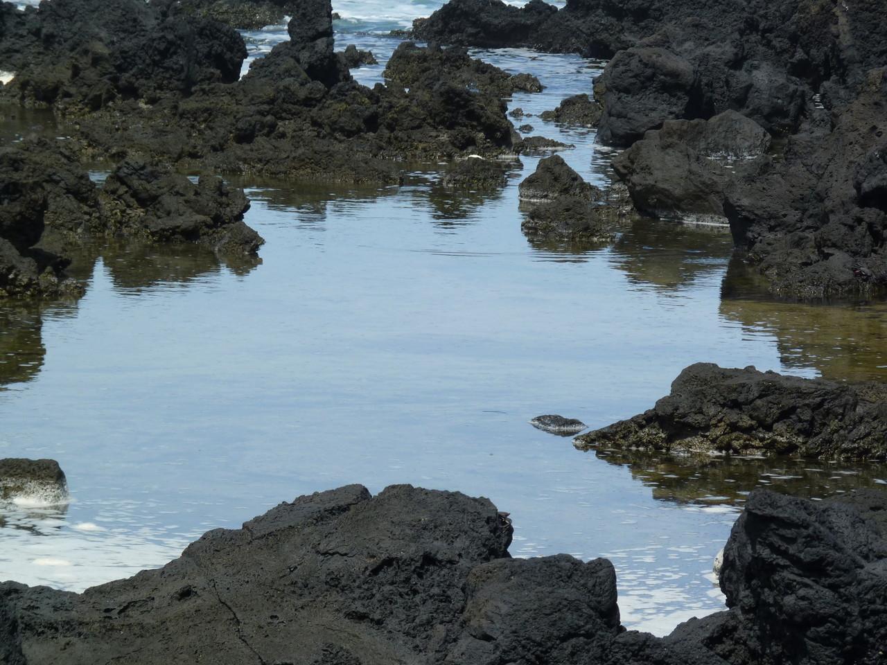 Fajã Grande - piscinas naturais 6.JPG