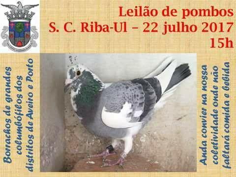Leilão Riba-Ul.jpg