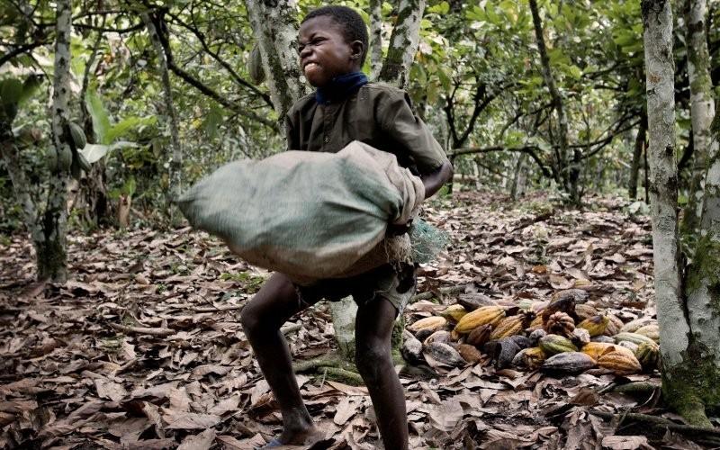 chocolate-criancas-escravas-1-1456141522.jpg