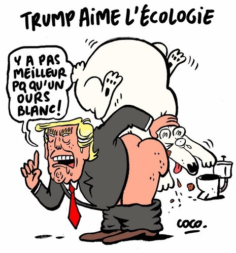 Trump.jpeg