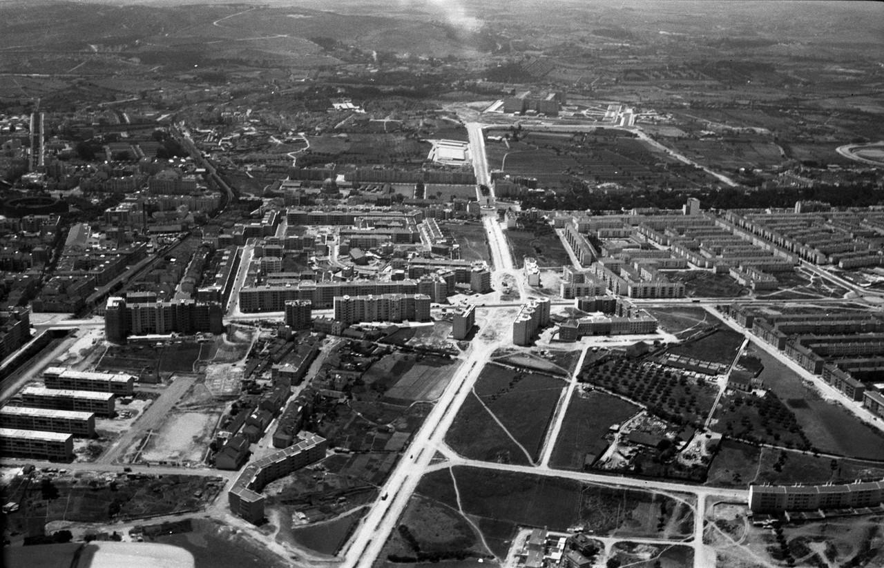 Fotografia aérea do bairro de Alvalade, 1953, fot