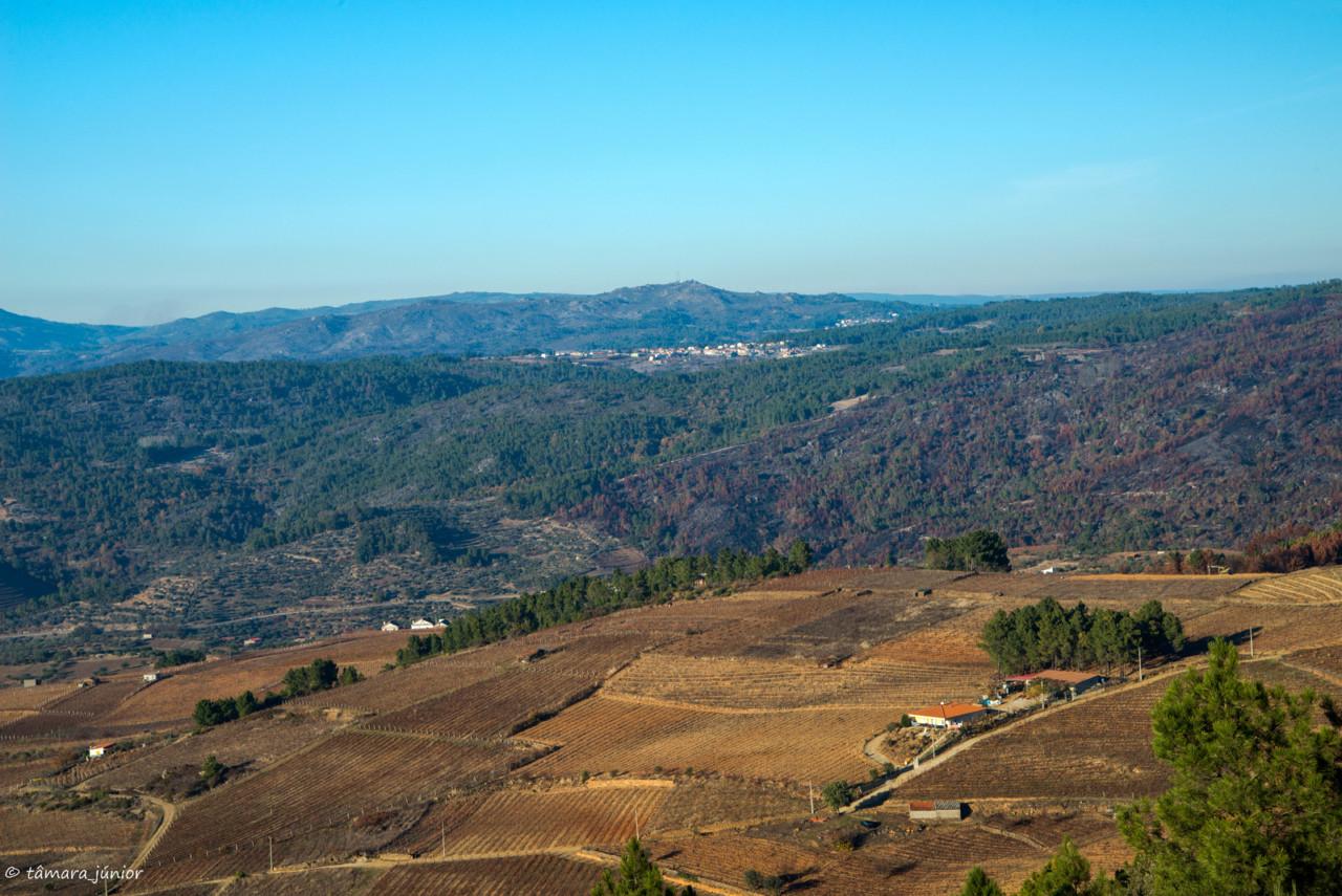 2017.- Pelo Douro no outono II (568).jpg