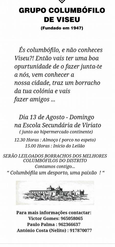 Leilão Viseu.jpg