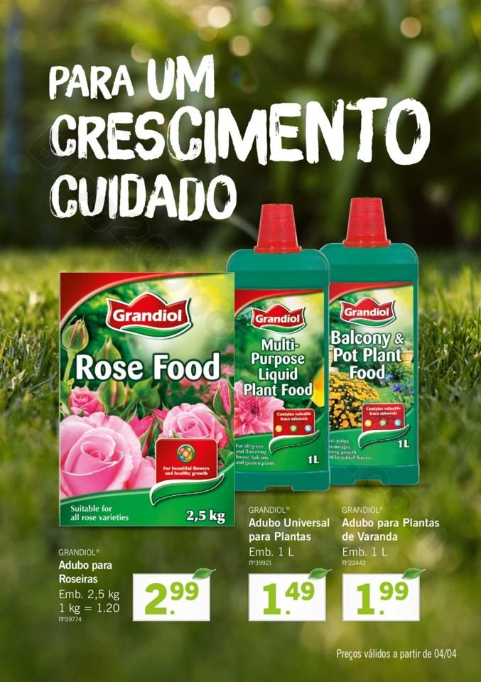Mercado-de-Plantas-A-partir-de-04.04-01_010.jpg