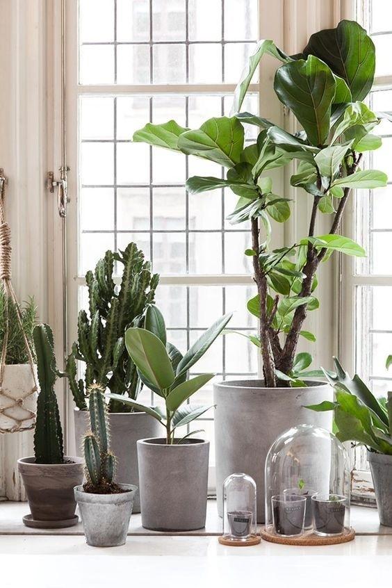 Refresque o design da sua casa com uma decoração verde (Imagem: www.myunfinishedhome.com)