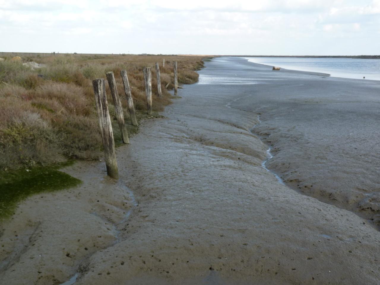 Parque Linear Ribeirinho do Estuário do Tejo (17)