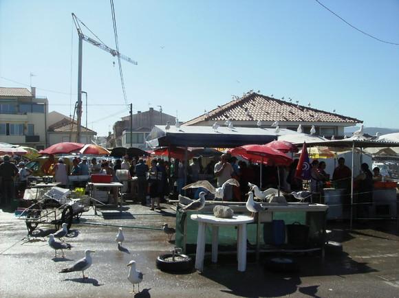 VPAncora-11Agosto2011 008