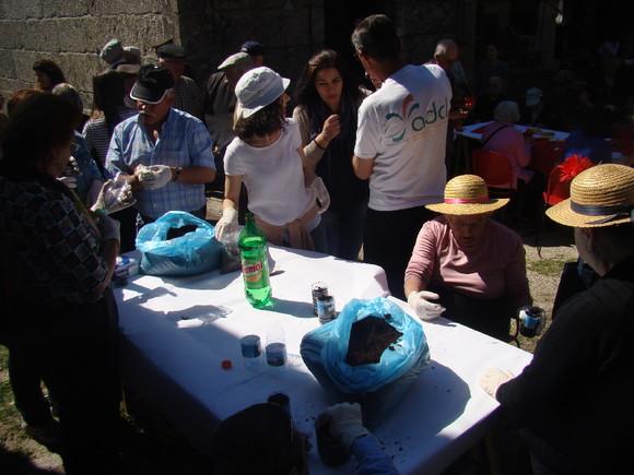 Atelier sementeira