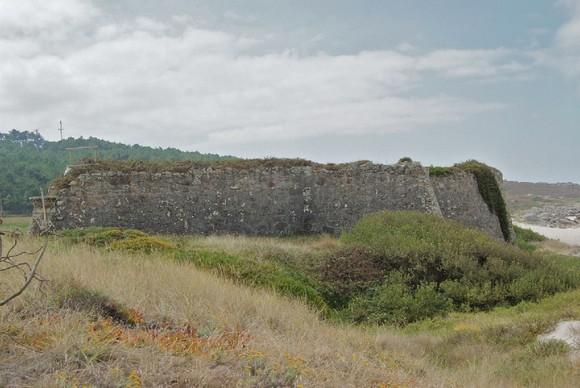 Carr castillo