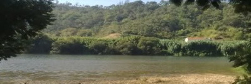 Rio no Rebolim
