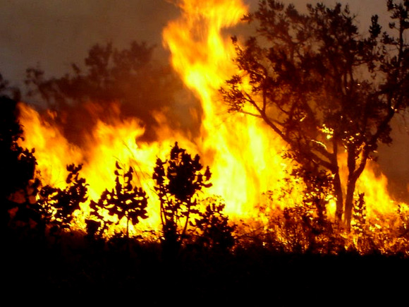 incendio2010