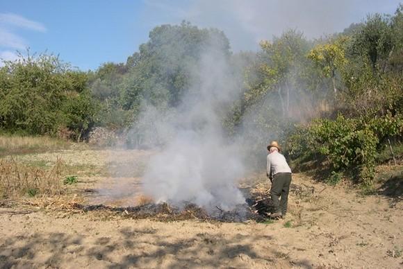 Prevenção de incêndios (3)