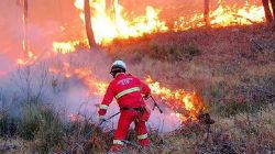 incêndios.jpg