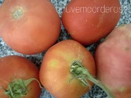 PicsArt_08-30-11.14.35.jpg