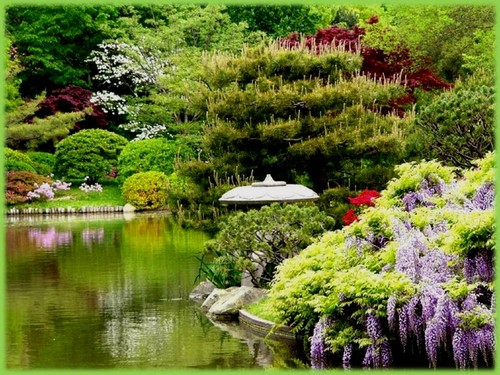 Jardins de agharta keukenhof gardens for Jardin keukenhof