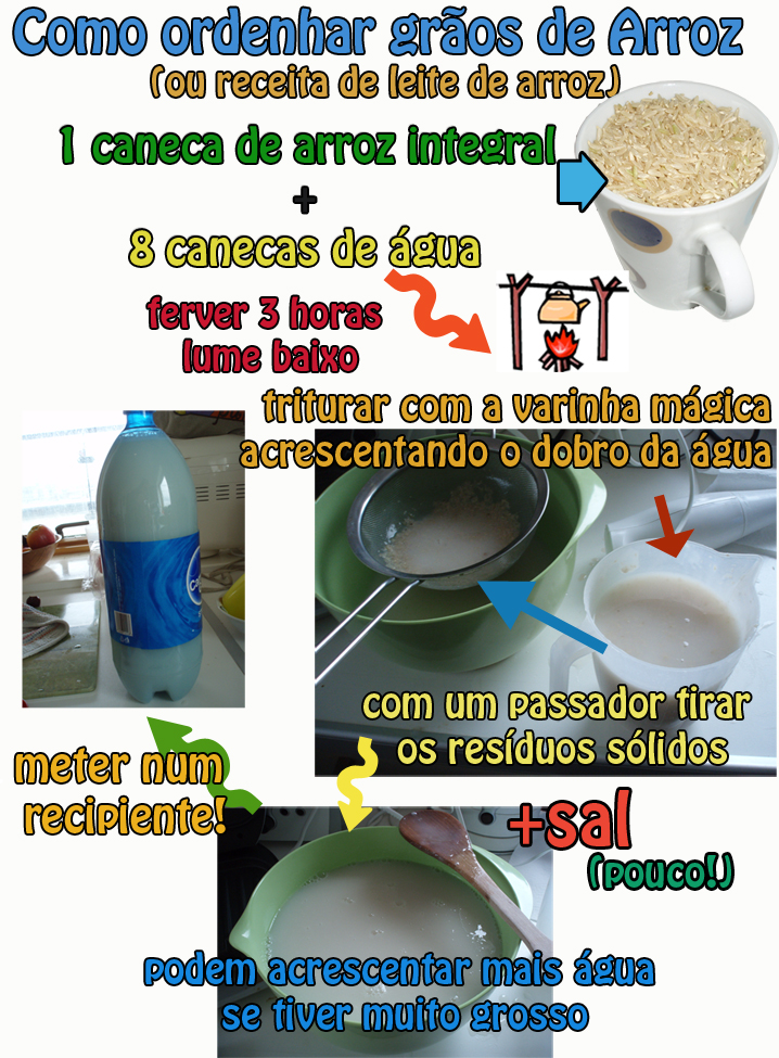 How To Make Rice Milk And Stop Supporting Rice Dream ...